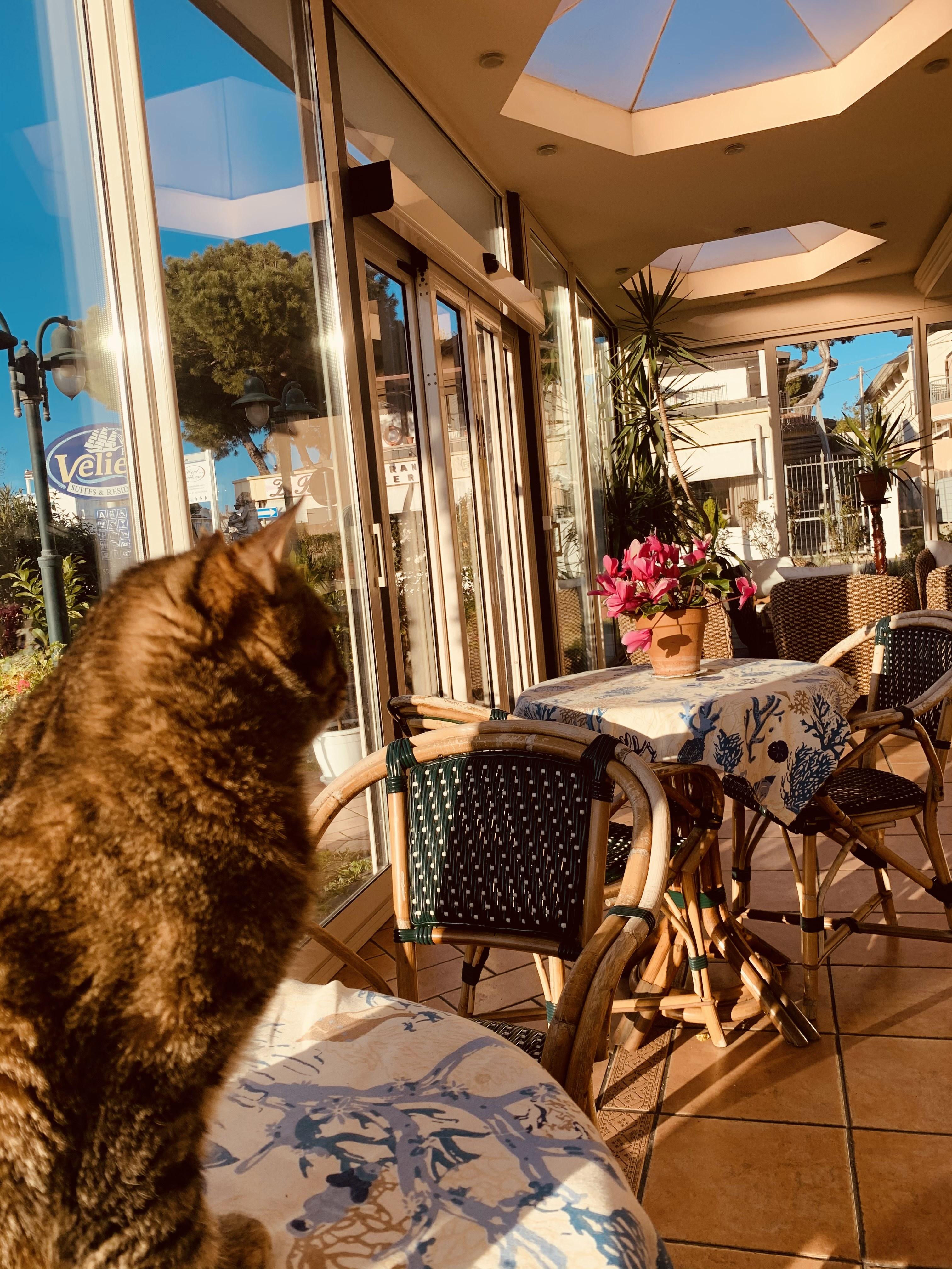 Residence a Riccione Appartamenti a Riccione per vacanze a Riccione